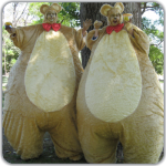 Children's entertainers the giant bears