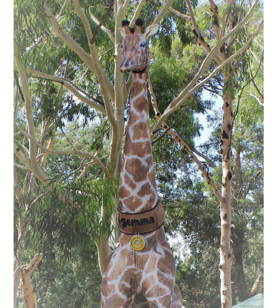 Gemma Giraffe Stilt Walkers Australia_soliq 11