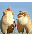 Giant Teddy Bears Melbourne and Victoria stilt walkers