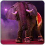 circus stilt walkers Eesha the performing elephant