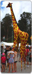 Children's entertainers Gemma giraffe