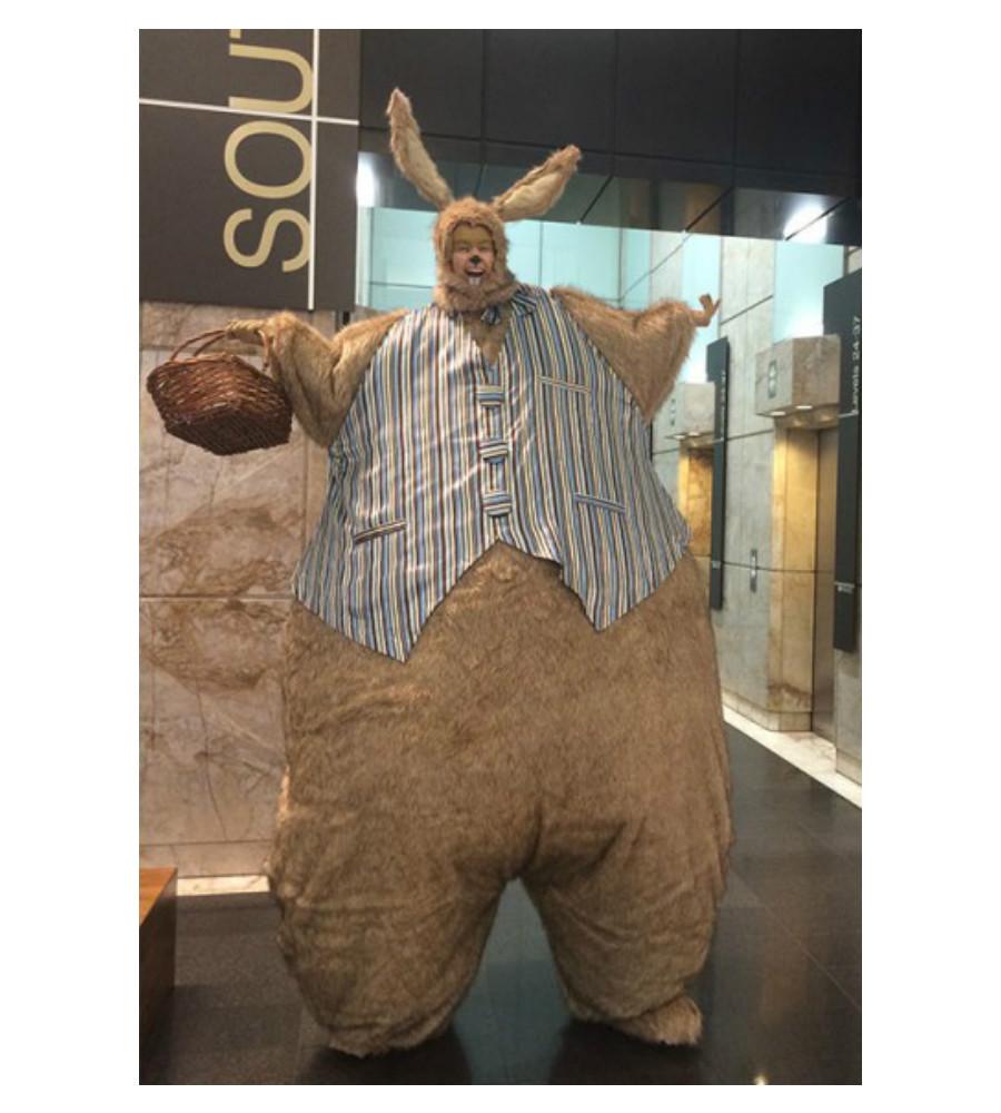 Giant Bunny_soliq